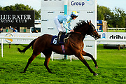 Bader ridden by Rossa Ryan and trained by Richard Hannon in the Kingstone Press Wild Berry Handicap (Class 6)  race.  - Ryan Hiscott/JMP - 17/08/2019 - PR - Bath Racecourse - Bath, England - Race Meeting at Bath Racecourse