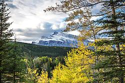 Mt Rundle, Autumn Color, Banff National Park