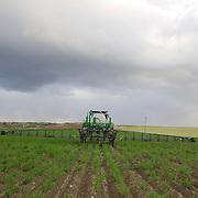 Paul Rasgorshek farm, Roundup ® applicator for Roundup Ready ® alfalfa (medicago sativa)