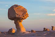 The Mushroom, chalk sculpture, Sahara Beida (white Desert), Egypt