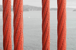 Four Support Cables in Detail of the Golden Gate Bridge. At eye level.