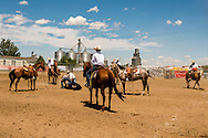 Will James Roundup, Ranch Rodeo, Yearling Doctoring, Hardin, Montana.