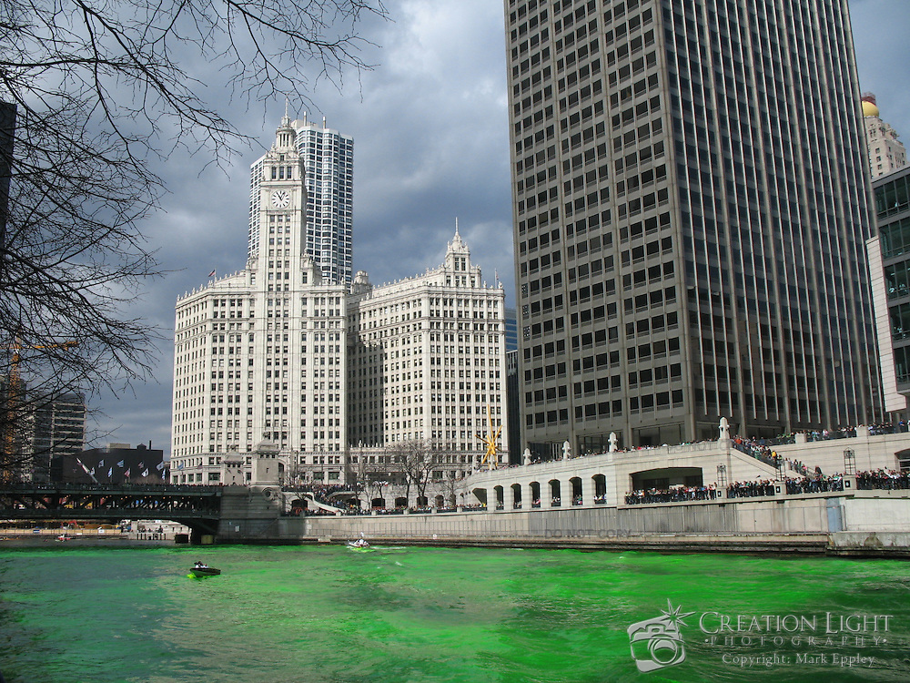 Each year the Chicago River is dyed green in celebration of St. Patrick's Day In the background is the Wrigley Building and the Michigan Avenue bridge