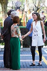 Queen Letizia of Spain attends the '5th Educational Congress on Rare Diseases' at High School 'Pedro de Valdivia' on April 26, 2018 in Villanueva de la Canada, Spain. 26 Apr 2018 Pictured: Queen Letizia. Photo credit: MEGA TheMegaAgency.com +1 888 505 6342