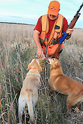 Labrador retrievers and a hunter take time out for a water break during a warm-weather pheasant hunt in South Dakota