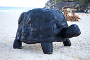 The world's largest free-to-the-public outdoor sculpture exhibition, Sculpture by the Sea, Bondi. .Mark Swartz, Reuben Solomon & Charmaine Tung - Tortoise