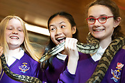 12/11/2018 Repro free: Galway Science and Technology Festival, the largest science event in Ireland, runs from 11-25 November featuring exciting talks, workshops and special events. Full programme at GalwayScience.ie. . From Our Lady's College Wiktoria Szejna,  Amoy Meng , Python holder  Caitlin Sills . Photo:Andrew Downes, Xposure.