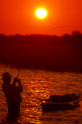 Stock photo of the silhouette of a man wading by his kayak and catching a fish at sunset