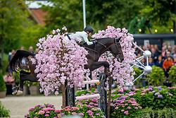 Baryard-Johnsson Malin, SWE, El Barone 111 Z<br /> Brussels Stephex Masters<br /> © Hippo Foto - Sharon Vandeput<br /> 29/08/21