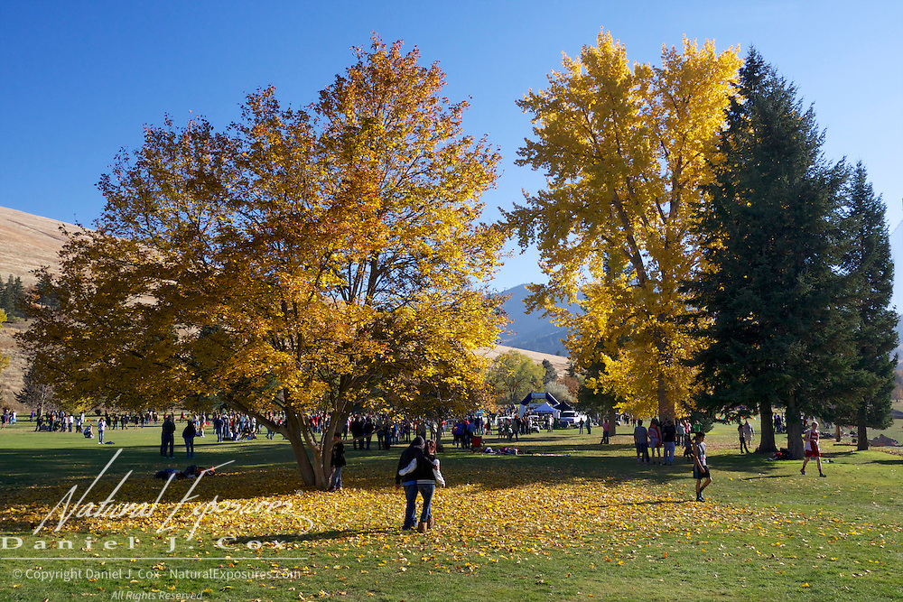 A beautiful fall day at the Montana MHSA Cross Country State Championships, Missoula, Montana