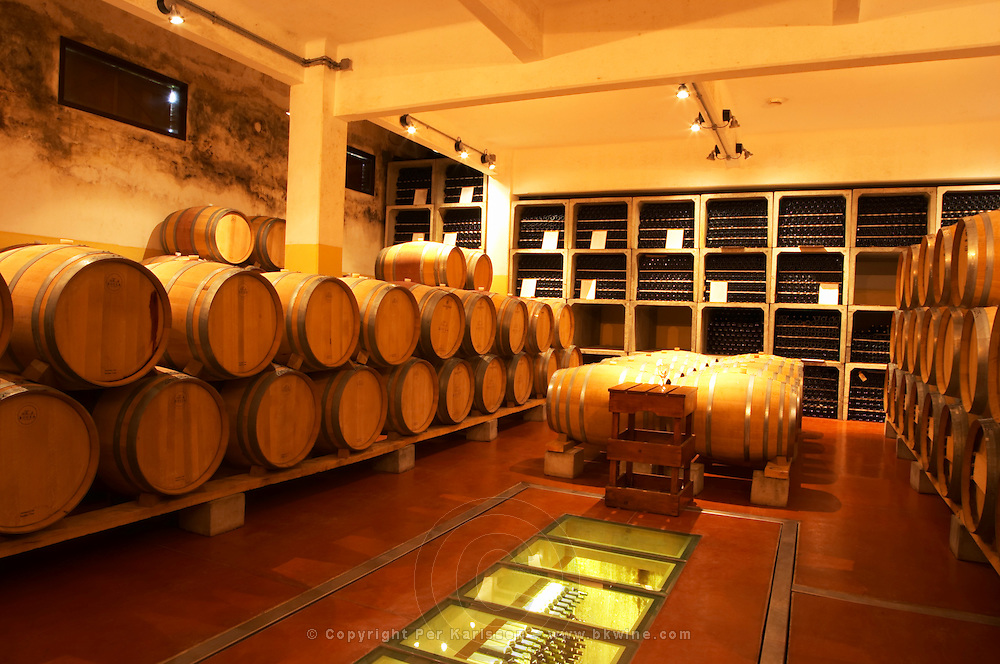 The barrel aging cellar with barriques and bottles. and the private bottle aging cellar below. Bodega Bouza Winery, Canelones, Montevideo, Uruguay, South America