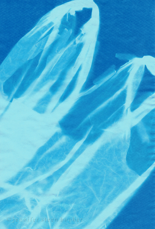 Scanned image of an original cyanotype.