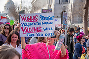 """San Francisco, USA. 19th January, 2019. At the Women's March San Francisco, a woman in a bright pink poncho smiles as she holds her sign reading: """"Vaginas brought you into this world. Vaginas will take you out!"""" Credit: Shelly Rivoli/Alamy Live News"""