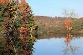 Autumn '13 Wexford/Manistee
