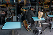 A Bulldog stretches beneath his owner in a central London cafe. The pet dog has had enough of sitting patiently and loyally at the feet of his owner who talks on the phone, seated at a table outside a cafe in Victoria in the capital. The Bulldog is a medium-sized breed of dog commonly referred to as the English Bulldog or British Bulldog. Other Bulldog breeds include the American Bulldog, Old English Bulldog (now extinct), Olde English Bulldogge, and the French Bulldog. The Bulldog is a muscular, heavy dog with a wrinkled face and a distinctive pushed-in nose. As a symbol however, the Bulldog represents the British people and Britishness - made famous by Winston Churchill during WW2.