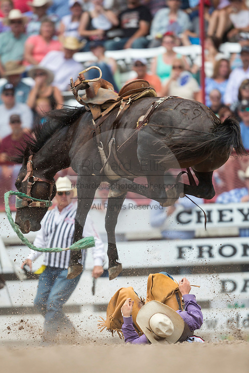 Bronco Dirty Little Secret leaps over Rookie Saddle Bronc rider Teal Schmidt at the Cheyenne Frontier Days rodeo at Frontier Park Arena July 24, 2015 in Cheyenne, Wyoming. Frontier Days celebrates the cowboy traditions of the west with a rodeo, parade and fair.