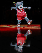 Feb 28, 2012; Houston, TX, USA; Houston Rockets mascot Clutch entertains fans against the Toronto Raptors during the first quarter at the Toyota Center. Mandatory Credit: Thomas Campbell-US Presswire
