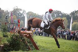 Smeets Dirk, (BEL), Icarus De Casmir<br /> Cross country<br /> Mondial du Lion - Le Lion d'Angers 2015<br /> © Dirk Caremans<br /> 17/10/15