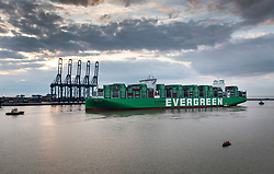 DATE CORRECTION © Licensed to London News Pictures. 12/09/2021. Felixstowe, UK. The world's largest container ship the Ever Ace arrives at the Port of Felixstowe on her maiden voyage. The 400m long ship can hold 23,992 containers, beating the previous record holder HMM Algeciras by 28. The Port of Felixstowe is the largest container port in the United Kingdom. Photo credit: Peter Macdiarmid/LNP