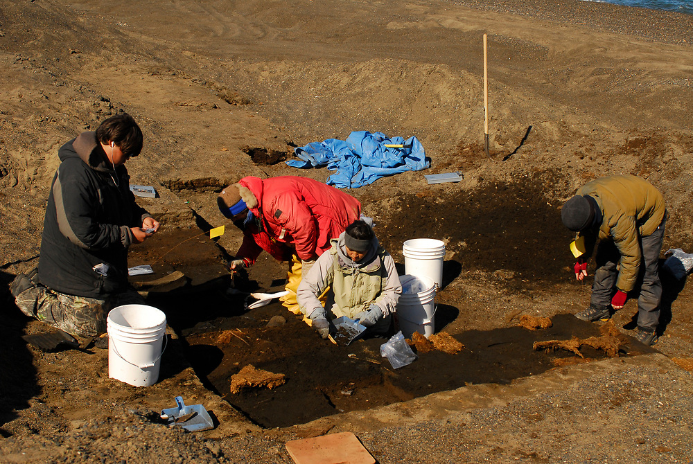 Alaska, Barrow. Point Barrow, Nuvuk. Archaeological excavation from the Thule period. Excavation of a 1,200 year-old cementery . Due to Fall season storms, the tundra is receding and being swollen by the ocean. The sea ice receds with global warming and Fall storms are storngers, Barrow is losing permafrost and soil. July 2007