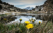 Hot Creek Mammoth Lakes