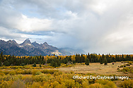 67545-09619 Fall color and Grand Teton Mountain Range from Blacktail Falls Overlook, Grand Teton National Park, WY