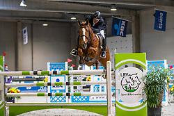 De Ridder Hans, BEL, Jelco van't Farsenhoven<br /> Klasse Zwaar<br /> Nationaal Indoor Kampioenschap Pony's LRV <br /> Oud Heverlee 2019<br /> © Hippo Foto - Dirk Caremans<br /> 09/03/2019