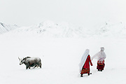 Two Kyrgyz women returning home after watching over the yak herd..In and around Ech Keli, Er Ali Boi's camp, one of the richest Kyrgyz in the Little Pamir...Trekking with yak caravan through the Little Pamir where the Afghan Kyrgyz community live all year, on the borders of China, Tajikistan and Pakistan.