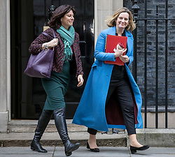 © Licensed to London News Pictures. 29/01/2019. London, UK. Minister of State at Department for Business, Energy and Industrial Strategy Claire Perry (L) and Secretary of State for Work and Pensions Amber Rudd (R) leave 10 Downing Street after the Cabinet meeting, as Brexit negotiations continue. MPs will vote on a series of amendments this evening. Photo credit: Rob Pinney/LNP