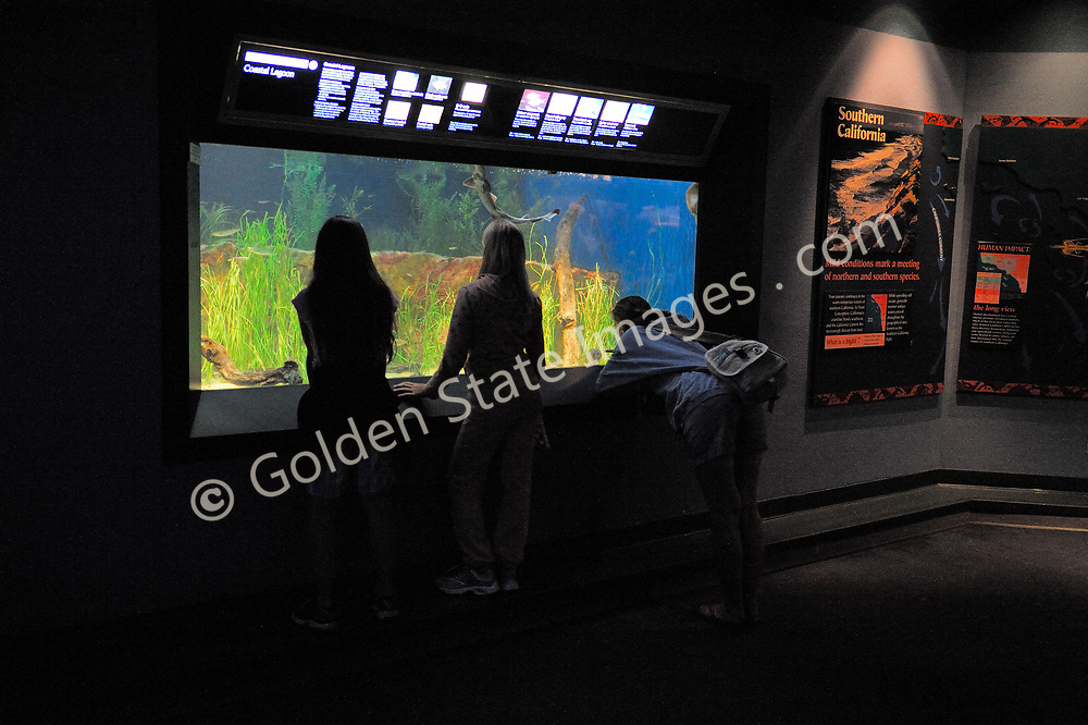 Southern California Gallery.<br /> <br /> Birch Aquarium at Scripps is a public aquarium for the Scripps Institution of Oceanography at University of California San Diego.