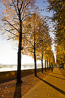 Autumn scene along the Elbe RIver, Dresden, Saxony, Germany