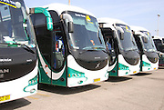 Israel, a line of Egged Tour buses