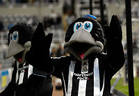 Photo: Jed Wee/Sportsbeat Images.<br /> Newcastle United v Barnsley. Carling Cup. 29/08/2007.<br /> <br /> Newcastle unveil two Magpie mascots before the game.