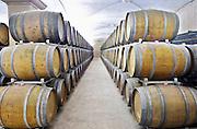 Oak barrel aging cellar. Albet i Noya. Oak barrel aging and fermentation cellar. Penedes Catalonia Spain