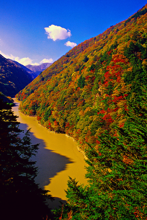 Autumn color near Midano Dam, on the road to Kamikochi, the Japan Alps, Nagano Prefecture, Japan