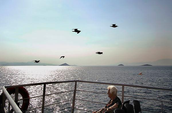Griekenland, Aegina, 5-7-2008Zeemeeuwen in volle vlucht. Boot vaart vanaf Grieks eiland naar Piraeus, Athene. Oudere vrouw zit op het achterdek. Foto: Flip Franssen