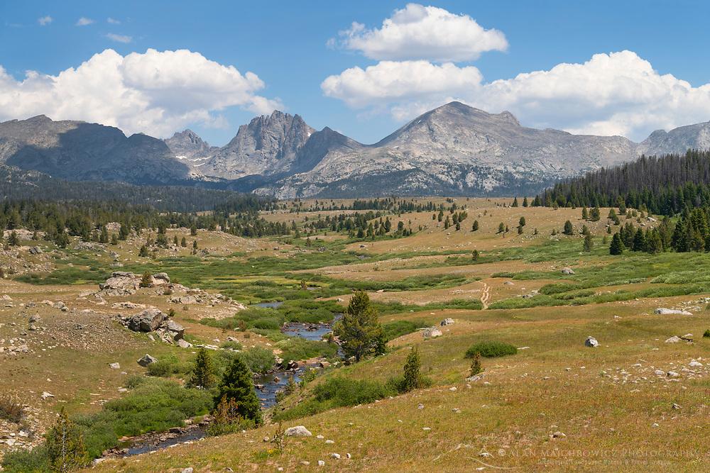 Mount Bonneville and Raid Peak seen from Scab Creek Trail. Bridger Wilderness, Wind River Range Wyoming