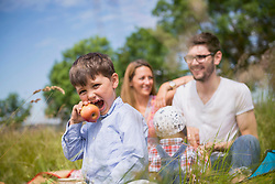 Little boy eating an apple on meadow in the countryside with  family in the background, Bavaria, Germany