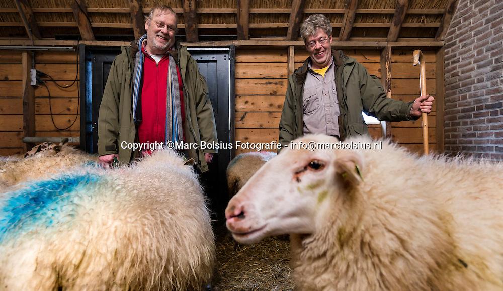 Nederland,  Schijndel, links Schaapherder Henk Hagemeijer en rechts Rob Smits tussen hun schapen in de Schaapskooi voor de rubriek Delen van Jessica Maas