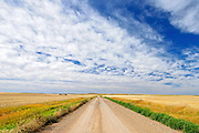 Country raod and clouds<br /> Piapot<br /> Saskatchewan<br /> Canada