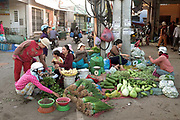 Early morning buying and selling of fresh local vegetables at the market in the Central Vietnamese town of Phan Rang. A large variety of vegetables are available for sale in fresh Vietnamese markets such as this, all being sold on small individual stalls.