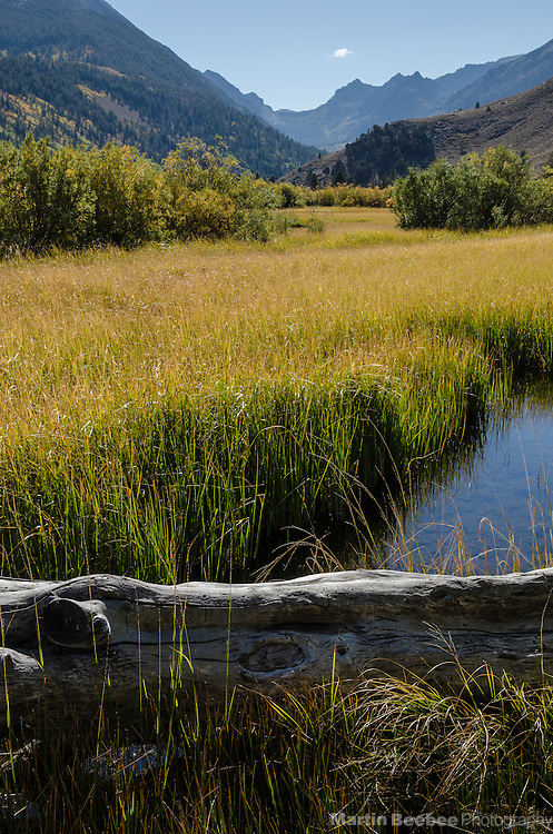 Green Creek, Green Creek Wildlife Area and Toiyabe National Forest, California