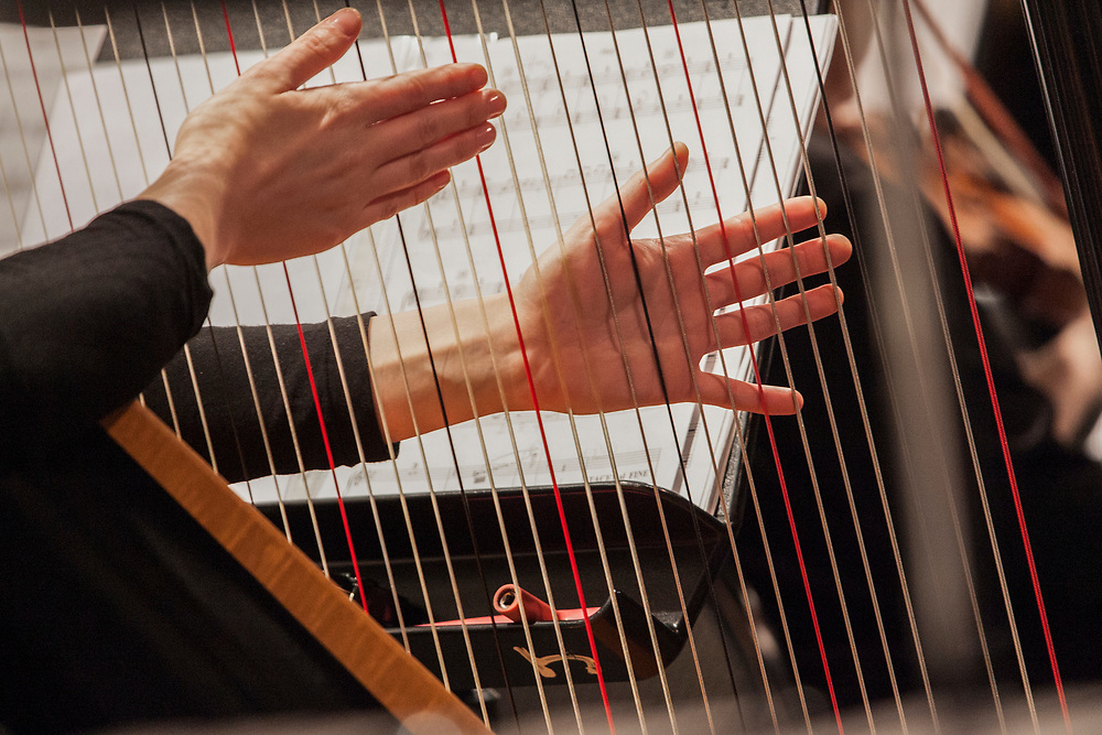 Harpist Playing Harp In Orchestra