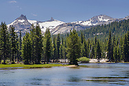 Tuolumne River, Yosemite National Park, California