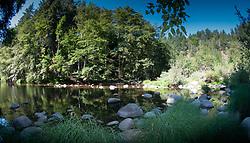 Berry Creek, Big Basin Redwoods State Park, California