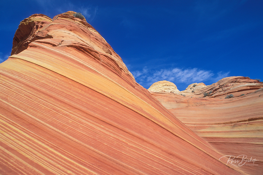 """Swirling sandstone formation known as """"The Wave"""" in the Coyote Buttes area, Paria Plateau, Paria Canyon-Vermilion Cliffs Wilderness, Arizona"""