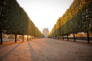 The Ecole du Louvre building at the end of a tree lined path, in the grounds of the famous Louvre palace complex in Paris, France