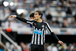 Daryl Janmaat of Newcastle United gestures - Photo mandatory by-line: Rogan Thomson/JMP - 07966 386802 -06/12/2014 - SPORT - FOOTBALL - Newcastle, England - St James' Park - Newcastle United v Chelsea - Barclays Premier League.