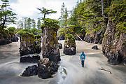 David Page hikes along sea stacks at San Josef Bay. Vancouver Island, BC