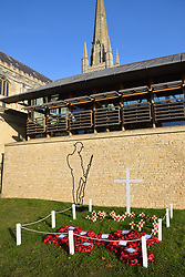 Remembrance Sunday poppy memorial, Norwich Cathedral, UK November 2020